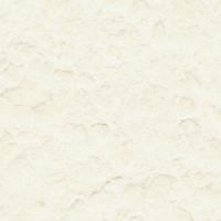 Flamboyant Avorio